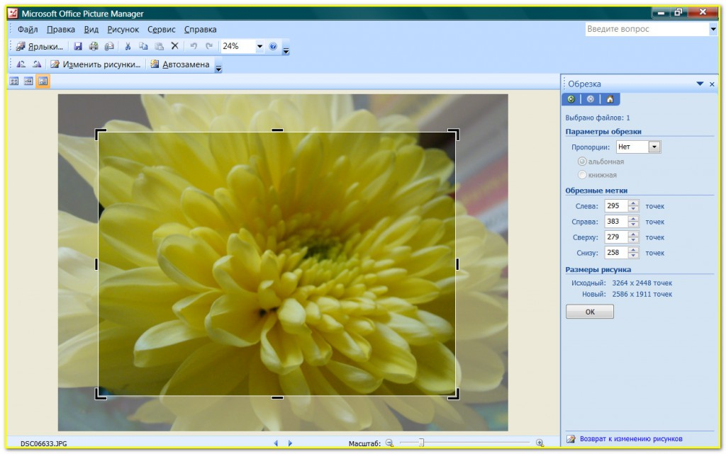 Picture Manager